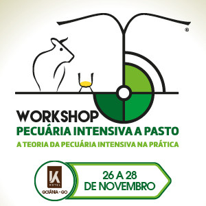 Workshop Pecuária Intensiva a Pasto 2019